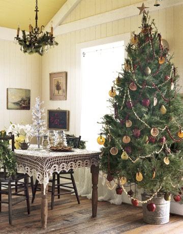 Blog #327 - Organic Tree